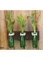 Natur:re Çevre Dostu 3'lü lü Duvar Süsü Vazo Yeşil